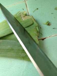 use both dark and light parts of leeks | stems and all